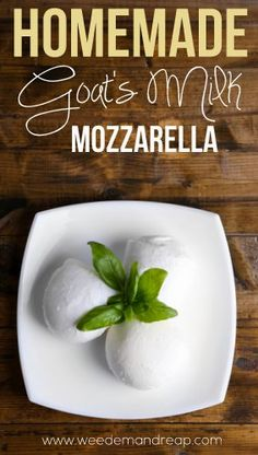 モッツアレラチーズのつくりかた。Recipe | Homemade Goat's Milk Mozzarella - Weed'em & Reap