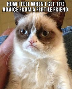 """There was no special trick you did, no old wives tale that """"worked for you"""", you were just fertile, and I'm not."""