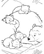 hibernating bear color sheet coloring page preschool january bear coloring pages. Black Bedroom Furniture Sets. Home Design Ideas