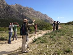 With thanks to Birdwatching Mallorca for the use of these 'photos