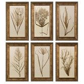 Found it at Wayfair - Wheat Grass by Grace Feyock 6 Piece Framed Painting Print Set