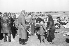 Photographs taken by German army photographer Johannes Hähle of the massacre of Jews in Lubny, Ukraine, 16 October 1942.<br /> The Germans occupied Lubny on September 13, 1941.<br /> The Jews of Lubny and the surrounding area were ordered to gather with their personal belongings on 16/10/1941. They were led to a site out of town and were murdered there by Einsatzkommando 4a (responsible for the murders of 59,018 people). </p> <p>photograph sources:<br /> Johannes Hähle<br /> Fotofund aus…