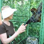 Meeting animals at Proyecto Asis Wildlife Rescue Center, Costa Rica