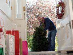 Albero di Natale: naturale o sintetico? #natalesensibile