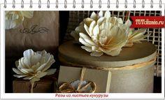 Розы из листьев кукурузы » Дизайн & Декор своими руками