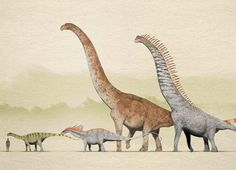 Sauropods of the Early Cretaceous