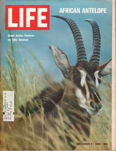 Life December 5 1969