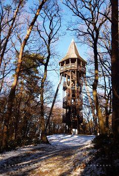 December 30-án sétálni indultunk az erdőbe. Több, mint négy órát sétáltunk hegyen-völgyön, patakparton, kilátóban. A végeredmény tíz km. Rem... Big Ben, December, Building, Winter, Construction, Buildings, Winter Fits, Winter Fashion, Architectural Engineering