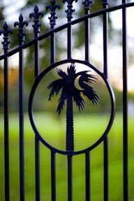 """Charleston, South Carolina - this will be on our iron gate.Palms 'n iron work: A newly discovered """"Favorite Pair! Carolina Pride, South Carolina Homes, Charleston South Carolina, Charleston Sc, South Carolina Tattoo, Front Yard Fence, Fenced In Yard, Low Fence, Small Fence"""
