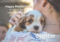 Have a great Mother's Day this weekend!