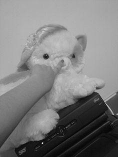 ownnn *-* thing cute, cat <3