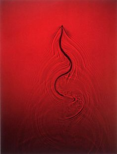 The Crafted Photograph | Adam Fuss | 1997 - Untitled (1997), cibachrome photogram, 40 x 30 inches.