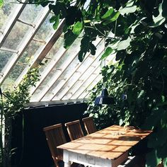 The most beautiful holiday home on Ærø, built like a greenhouse. I would like to have breakfast here every morning! More from this place on my blog for those interested! #whpthegreatindoors