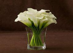 Cala Lilies, my FAV flowers...so simple and elegant