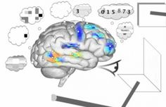 Ερευνητές δημιούργησαν τον κορυφαίο εικονικό εγκέφαλο στον κόσμο που περνά μέχρι και IQ test.  http://www.techmeup.gr/index.php/78-general/1617-ereynites-dimioyrgisan-ton-koryfaio-eikoniko-egkefalo-ston-kosmo-poy-perna-mexri-kai-iq-test