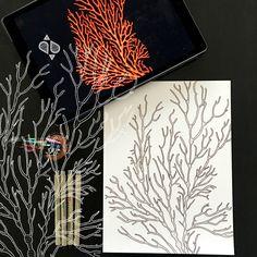 Day 28 #30ideas30days #illustration #flowers #blackandwhite #drawing #patternly.design #30ideias30dias #ilustração #flores #pretoebranco #desenhoobservacao #decolalab2016 #oficinaamandamol