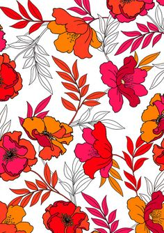 Poppy Design by Cressida Carr