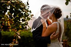 Image result for winery wedding photos
