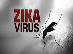 Read here to know Hidden #facts about #Zikavirus  http://www.doctorsclinicblog.com/diseases/hidden-facts-about-zika-virus/