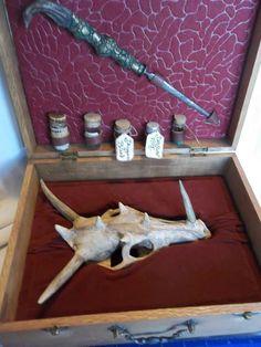 Real Dragon Skull Wizard Wood Box 5 Potion Bottles Knife/Athem Oddities Gaff