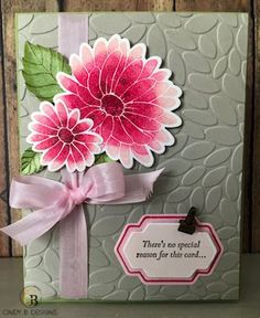 Spring Occasions Week Card #4 With The Special Reason Bundle | Cindy B Designs