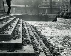 Paris, Vert Galant on a Fall Afternoon, 1963 | André Kertész