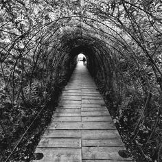 Road Less Traveled: His current collection of work is aptly called 'The World Through My Eyes.' The  photograph for this GIF is from Dariusz Klimczak .  (GIF: George RedHawk