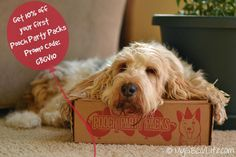 Get Wild In The Woods with @poochpartypacks #subscription box all made in the USA products supporting veteran's dogs, shelters, and small businesses | My GBGV Life