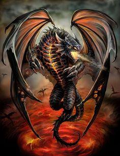 Super Ideas For Tattoo Dragon Black Anne Stokes Dragon Pictures, Bear Pictures, Pictures To Draw, Celtic Tattoos For Men, Dragon Tattoos For Men, Dragon Medieval, Celtic Dragon, Chinese Tattoo Designs, Dragon Tattoo Designs