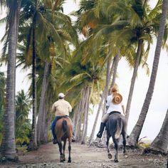 Palm trees & #ocean breeze - there's not much better! ?? #CostaRica #vacations. COSTARICAEXPERTS.COM