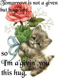 giving you a hug quotes cute quote hugs image quotes picture quotes Hugs And Kisses Quotes, Hug Quotes, Kissing Quotes, Life Quotes Love, Qoutes, Need A Hug, Love Hug, Good Morning Hug, Morning Cat