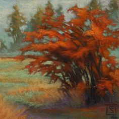 """Frost  and  Fog Study 1"" - Original Fine Art for Sale - © Sheila Evans"