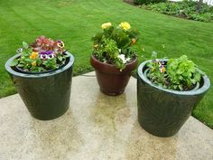 1.Use an artificial soil that is composed mostly of peat moss. Good soils such as Pro-Mix and Fafard use peat, perlite, and other ingredients to produce a soil that will not compact over the summer. Normal garden soil, under the pressure of regular watering, compacts and turns to concrete. When this occurs the roots of the plant stop growing because they no longer have the required open spaces to move into and absorb nutrients. Do not use real soil that is hard and compacted in your containers b