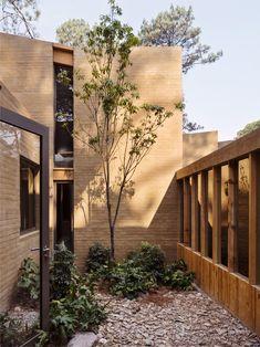 héctor barroso taller de arquitectura / casa entrepinos, valle de bravo