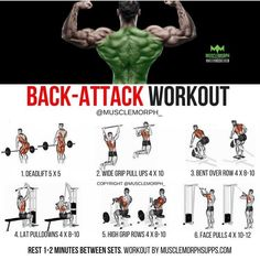 Want a BIGGER BACK? Try this workout LIKE/SAVE IT if you found this useful. FOLLOW @musclemorph_ for more exercise & nutrition tips . TAG A GYM BUDDY . ✳Enhance your progress with @musclemorph_ Supplements ➡MuscleMorphSupps.com #MuscleMorph