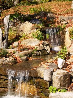 Petite cascade d 39 eau et son bassin un ext rieur avec for Amenagement paysager avec roche decorative