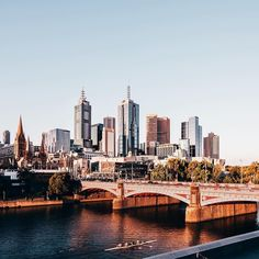 What a city we live in! Photo via Melbourne Victoria, Victoria Australia, Paths, New York Skyline, Around The Worlds, In This Moment, Photo And Video, Live, Bridges