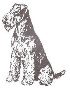 "Dog Rubber Stamp - Airedale-2E (Size: 1-1/2"" Wide X 2"" Tall) by DogStampsPlus.com, http://www.amazon.com/dp/B000M0EU8Q/ref=cm_sw_r_pi_dp_-KULrb0WV103S"