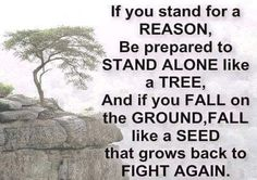 If you stand for a reason, be prepared to STAND ALONE like a tree, and if you FALL on the GROUND, FALL like a SEED that grows back to FIGHT AGAIN