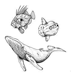 Down the sea. Tattoo Flash by Ego Sum Lux Mundi. More info: https://www.instagram.com/egosumluxmundi/ https://egosumluxmundi.hotglue.me/