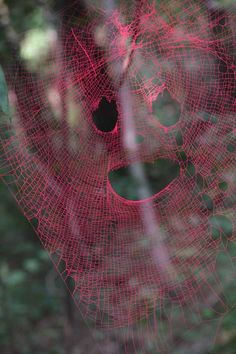 These colorful sculptures are actually painted spider webs / Michael Anthony Simon Land Art, Sculpture Art, Sculptures, Water Drop Photography, Abstract Photography, Homemade Halloween Decorations, Spider Costume, Conversational Prints, Organic Art
