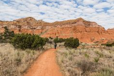 There's so much beauty to see when hiking Palo Duro Canyon! #roadesque From Roadesque.