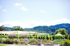 #NVCE Brix Gardens