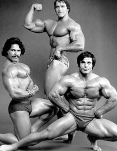 Bodybuilders Arnold..., www.HealthVG.com/the-muscle-maximizer