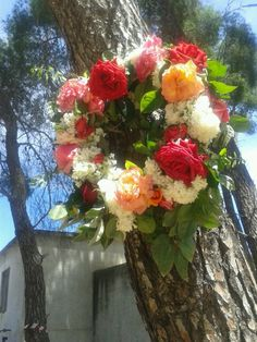 Καλη Πρωτομαγια!!! Seasons In The Sun, Casual Outfits, Casual Clothes, Good Morning, Floral Wreath, Wreaths, Spring, Greek, Relax