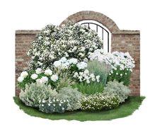 """Duft-Kollektion """"Schneewittchen"""" Wie eine zarte Duftwolke in Weiß scheint diese edle Kollektion im Garten zu schweben. Die zahllosen Blüten des Bauernjasmin 'Belle Etoile' verströmen einen herrlich süßen Duft, der mit dem der..."""