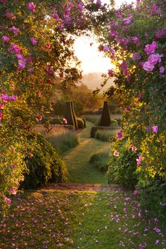 ~~Pettifers Gardens, Banbury, Oxfordshire, UK by Clive Nichols~~ garden photography Introducing photographer, Clive Nichols. Beautiful World, Beautiful Gardens, Beautiful Places, Amazing Gardens, Beautiful Beautiful, The Secret Garden, Secret Gardens, Rooftop Garden, Parcs