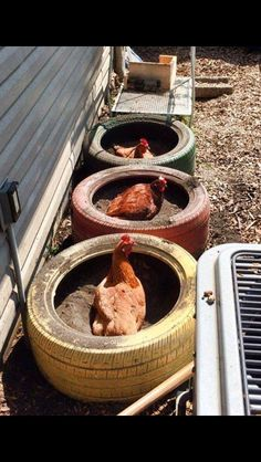 Dust baths from old tires