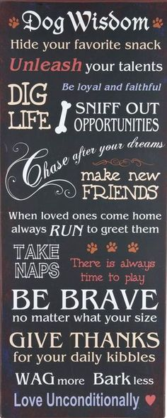 Ah to have wisdom like a dog! DogGoneGoodBarker - Funny Dog Quotes - Ah to have wisdom like a dog! DogGoneGoodBarker The post Ah to have wisdom like a dog! DogGoneGoodBarker appeared first on Gag Dad. I Love Dogs, Puppy Love, Cute Dogs, Awesome Dogs, Dog Quotes Funny, Funny Dogs, Pet Quotes, Quotes About Dogs, Wisdom Quotes