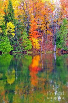 'Autumn Reflecting In Still Waters' - photo by Terri Gostola;  Mesick, Michigan